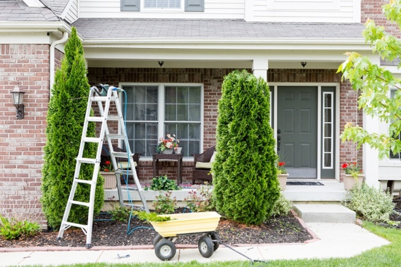 How An Arborist Can Help You For Your Garden